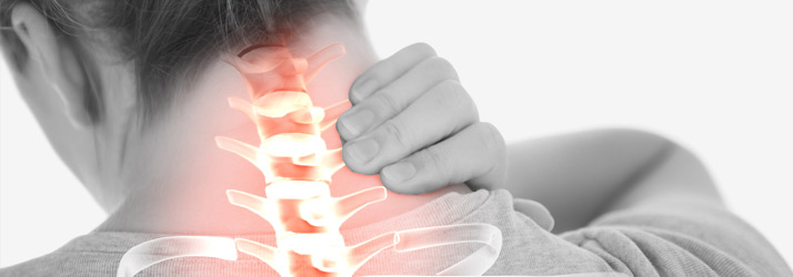 Chiropractic Goldsboro NC Our Services